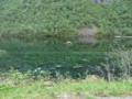 reste gefluteter-bauernhof-image004-46